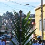 Semana Santa 2018: 'S. Pedro e S. Paulo' celebra domingo de Ramos